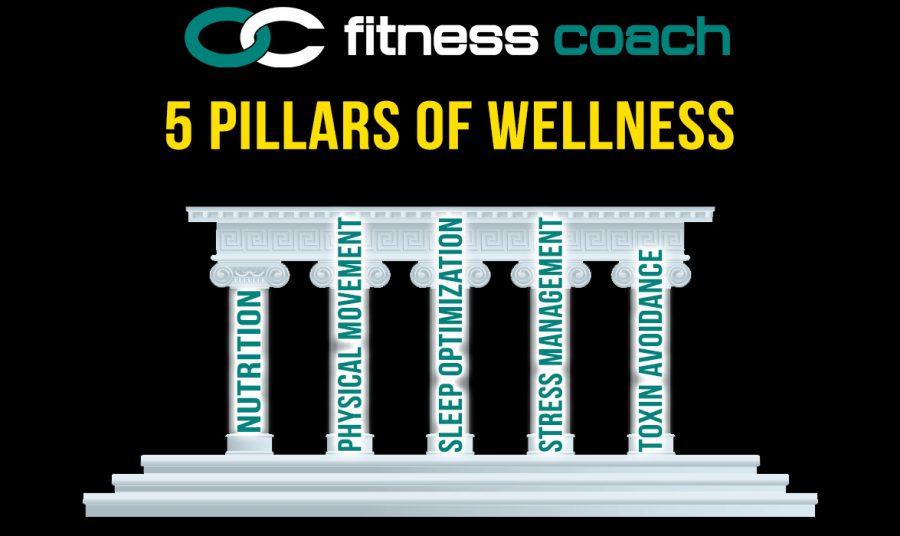 wellnesspillars