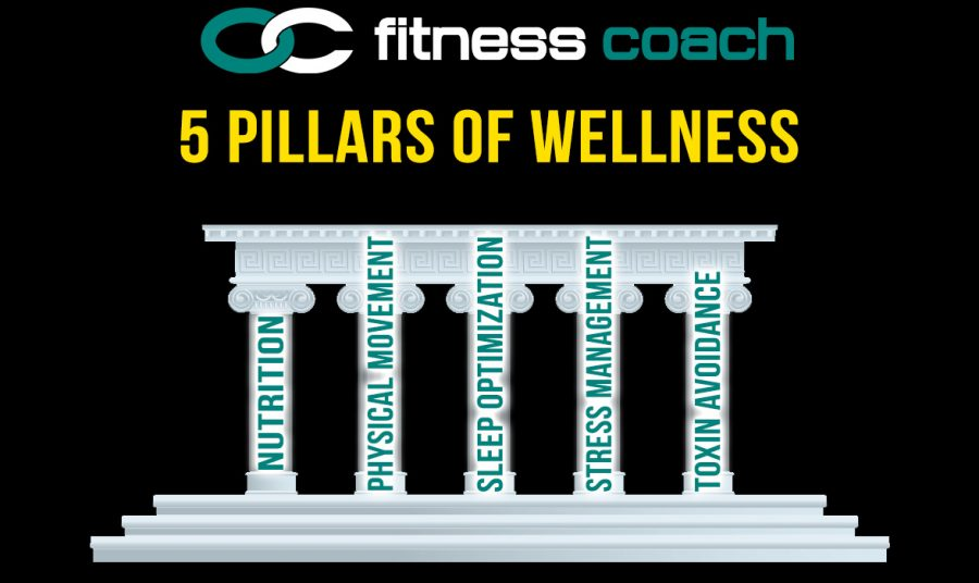 wellnesspillars